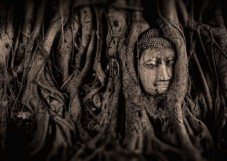SensÉvidence | Bouddha